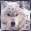 TDF Winter Wolf