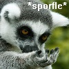 Lemur with a hand to its face.  Text: *sporfle*