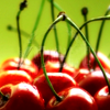 stock icon of cherries against a green background