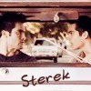 Sterek