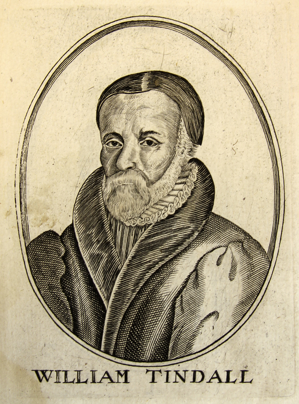 'William Tindall' from [Herōologia Anglica]