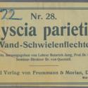 Physcia parietina Nr28 b22.jpg