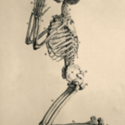 Kneeling Skeleton 600x800.jpg