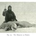 Observer as Hunter fig 27.jpg