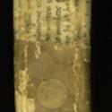 Cabinet 1 Euricius Cordus spine.jpg