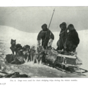 Australasian Antarctic Sledge team fig 2.jpg