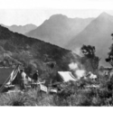 Ruwenzori camp.jpg
