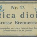 Urtica dioica Nr47 Ad32.jpg