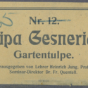 Printer Ticket : Tulipa gesneriana