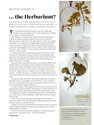 University of Otago Magazine, Vol. 38, 'Whatever happened to the Herbarium?'