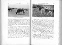'Sociology of Tristan da Cunha' from Results of the Norwegian Scientific Expedition to Tristan da Cunha, 1937-1938. No. 13
