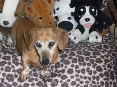 Rubysittingwithteddies_large