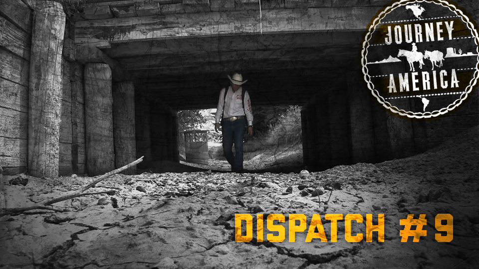 Dispatch_9