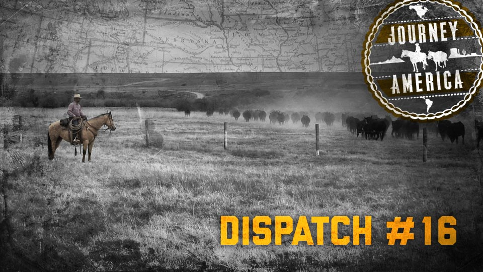 Dispatch_16_2