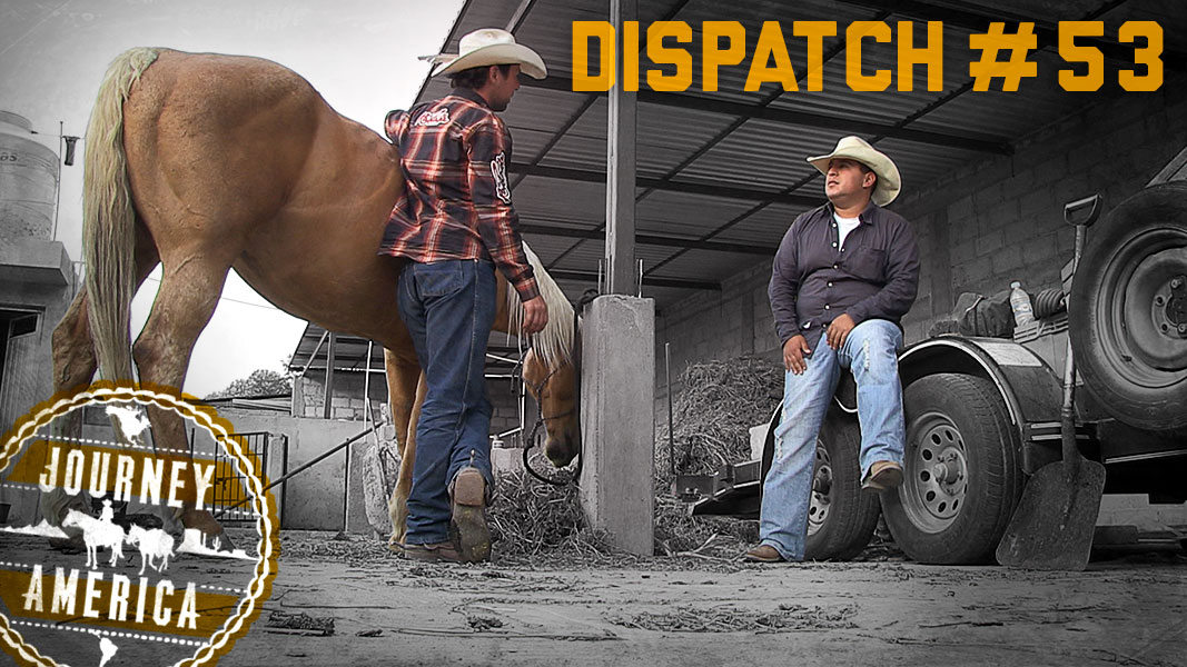 Dispatch_53
