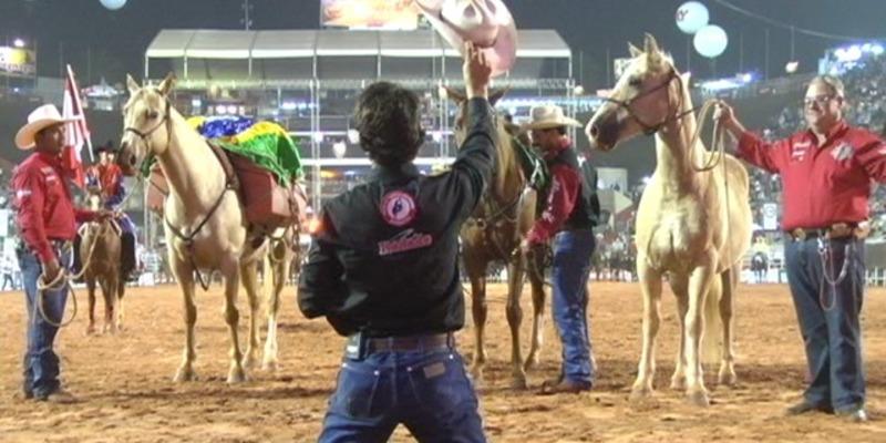 Agradecendo_cavalos
