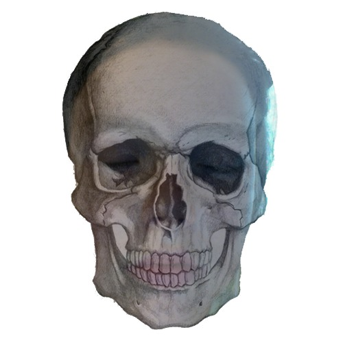1369003818-skull-220130519-25-18x8cui