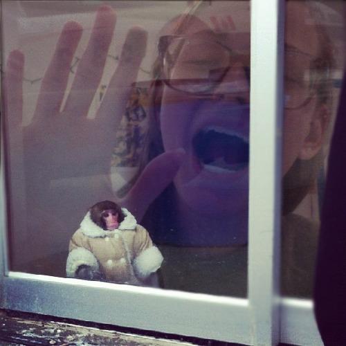 1384047788-ikea-monkey20131110-5-w61xwp