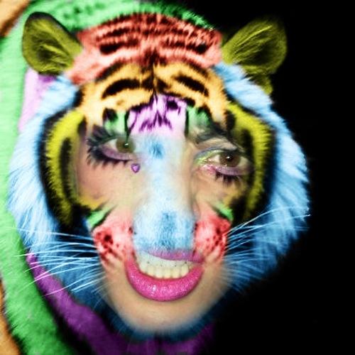 1408484043-rainbow-tiger20140819-23-1krpqzn