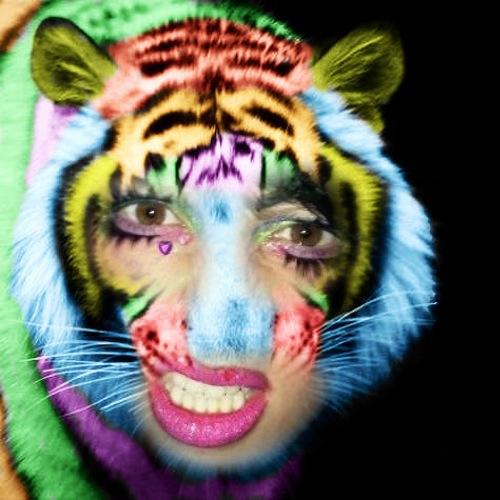 1408484162-rainbow-tiger20140819-34-hecblm