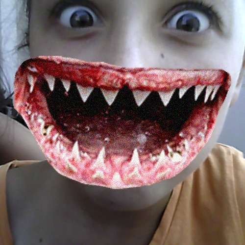 1408705061-catwang-shark-mouth20140822-22-1rjhgkx