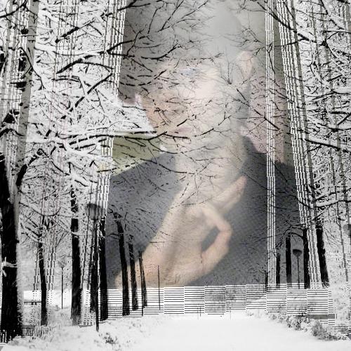 1413067834-snowy-day20141011-14-1ljp0il