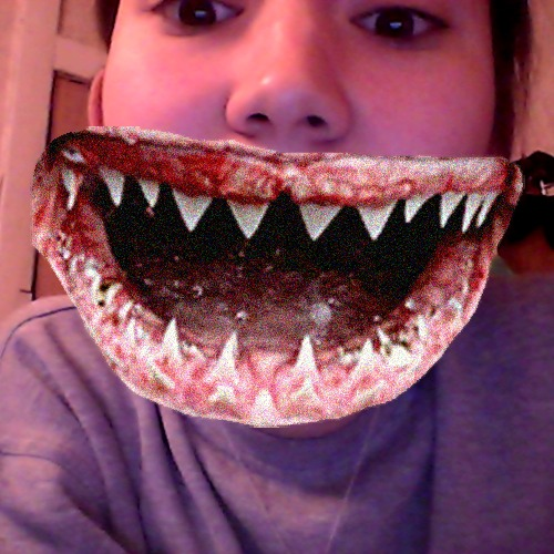 1416686871-catwang-shark-mouth-arkalova20141122-11-185l8gj