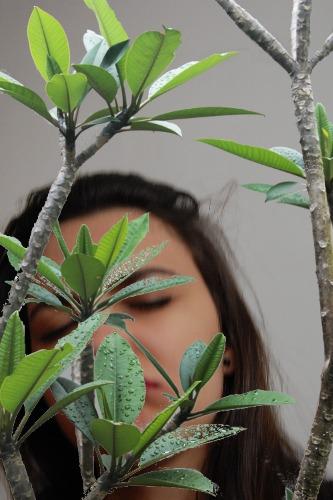 1418984634-tree20141219-5-el219o