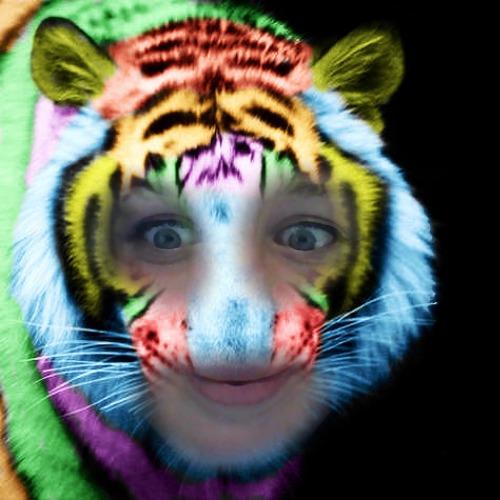 1432141428-rainbow-tiger20150520-12-984ne5