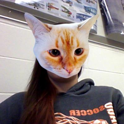 1443810172-kitty-cat-peaches20151002-9-n7q19u