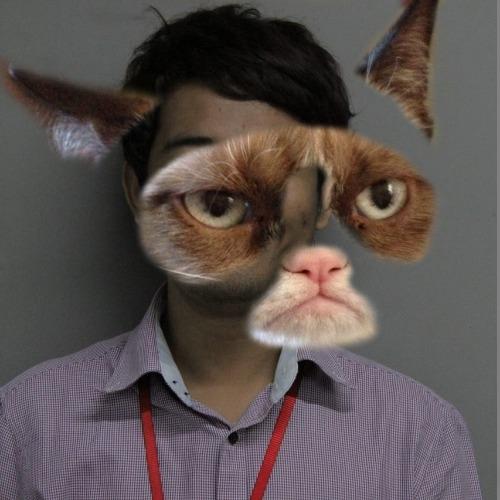 1484726440-grumpy-mask20170118-13-9do44r