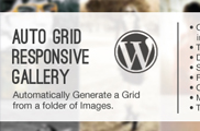 Auto Grid Responsive Gallery - WordPress