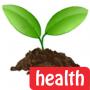 HealthHive