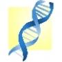 Genetics_News