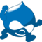 Thumbnail_drupal%20web%20development-small