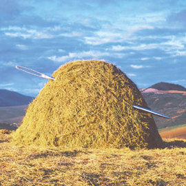Normal_finding-a-needle-in-a-haystack