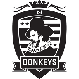 Normal_donkeys_square