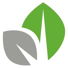 Normal_leaf