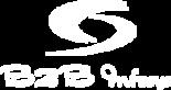 B2B Infosys Inc's Company logo