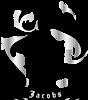 Jacobs Capital Pty Ltd's Company logo