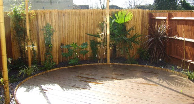 Beneath this a circular deck was built and stained a rich brown. Blue LEDs were inserted to the surface, and to the step down to the patio, to give the 'wow' factor our client desired.