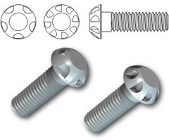 TR Security Machine Screws Type 12
