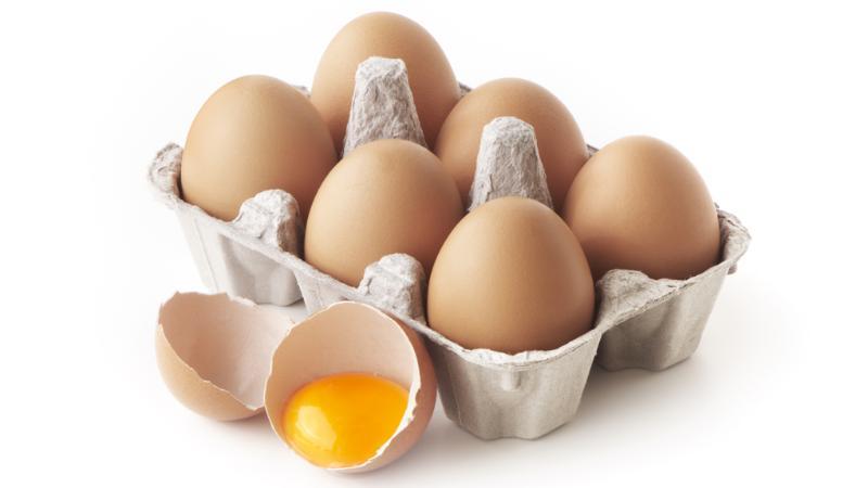 En el Día Mundial del Huevo, conoce más de este nutritivo alimento
