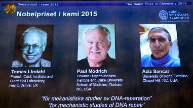 Nobel de Química a tres científicos por resolver incógnitas del ADN