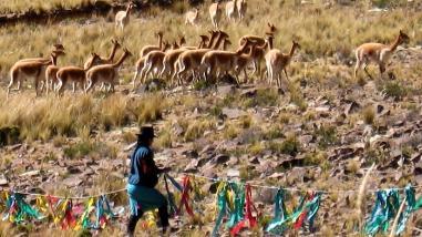 """Santiago de Chuco se prepara para tradicional festival del """"Chaccu"""""""