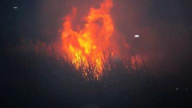 ¡Sos! Incendios devastan flora y fauna en Picol y via hacia Paruro