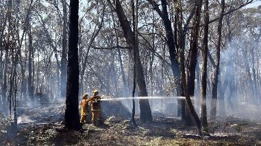 Nueve muertos en un incendio en campamento nómada en Irlanda