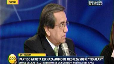 Del Castillo: El Gobierno está detrás de emisión del audio de Oropeza