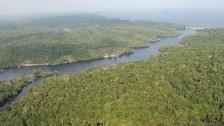 Amazonía pierde entre 2000 y 2013 una superficie similar a Reino Unido