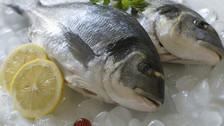 ¿Cómo evitar una infección o intoxicación por comer pescado?